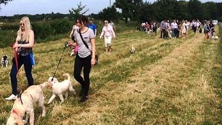 Open day group walk. Picture: Centre Paws