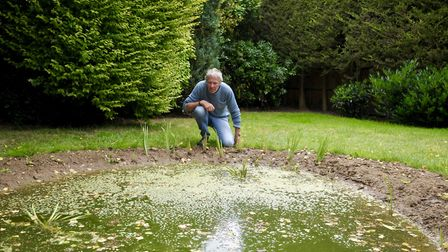 It doesn't look much yet but it will become an urban wildlife haven, says John Bailey. Picture: John