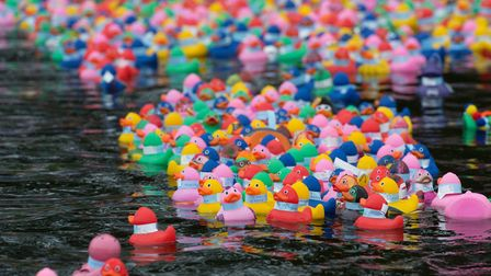 The colourful Beccles Duck Race