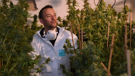 Sgt Toby Gosden at the cannabis factory found in Lenwade. Picture: DENISE BRADLEY