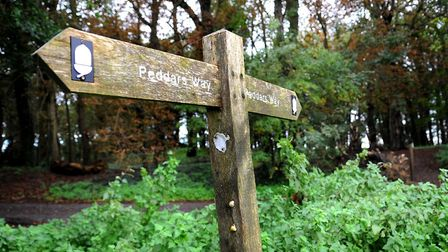 Kevin Flanagan has written a piece of music based on his walk along Peddars Way Picture: Denise Br