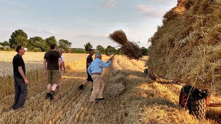 Preparations for the 2019 Dentill vintage farming working day. Picture: Adrian Hipwell
