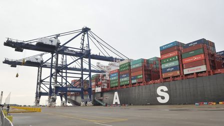 The report warns of long delays at ports. Pictured is the Port of Felixstowe. Picture: SARAH LUCY BR