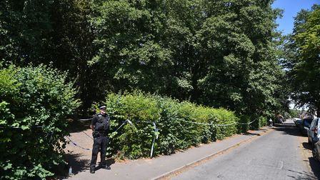 The incident at Adelaide Street park. Picture: ANTONY KELLY