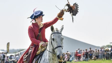 Falconry at Sandringham Game and Country Show Credit: Sandringham Game and Country Show