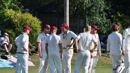 A job well done. Swardeston players enjoy their semi-final win over Ealing Picture: TONY BAILEY