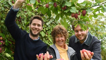 Nina Plumbe who is passing over the running of her plum orchard near Burnham Market to her cousins M