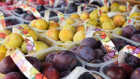 The ready picked plums for sale at Plumbe & Maufe's plum orchard near Burnham Market. Picture: DENIS