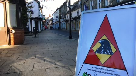 Some 25 businesses in Mere Street have signed up to the scheme to used hawks to scare off pigeons in