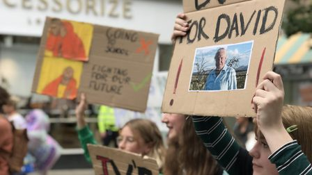 Hundreds of youngsters marched through the streets of Norwich on Friday as part of Swedish activist