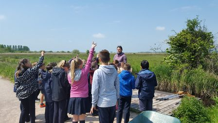 School children asking questions on a visit to Carlton Marshes. Picture: Broads Authority