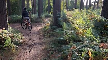 The mother-of-three was riding at Tunstall Woods, near Ipswich on September 1. Picture: Contributed