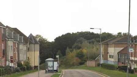 Sir Alfred Munnings Road in Queen's Hills, Costessey. Pic: Google Street View.