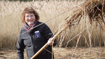 Norfolk Wildlife Trust chief executive Pamela Abbott, pictured at Southrepps Commons nature reserve.