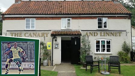 The Canary and Linnet pub, off the A47 in Little Fransham, has a new sign depicting Norwich City and