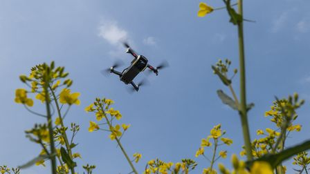 A drone monitoring an oilseed rape field. Picture: Drone Ag