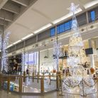 intu Chapelfield's fantastic Christmas lights will get you into the festive spirit. Picture: intu Ch