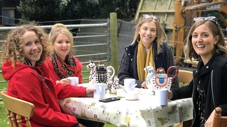Friends enjoy afternoon tea with alpacas who are enclosed in the pen with them Credit: Norfolk Alpac