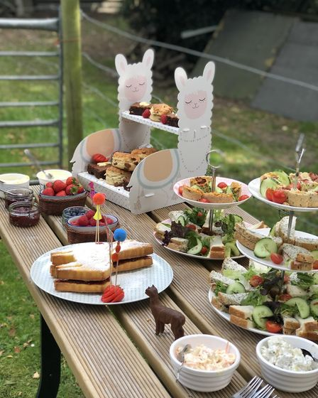 The afternoon tea features sweet and savoury treats including a Victoria Sponge shaped as an alpaca
