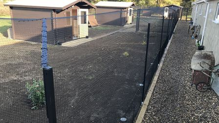 Some of the new outdoor facilities for feral cats at Venture Farm Cat Rescue in Mattishall. Picture: