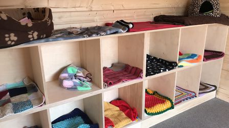 Heated wooden cabins and cosy blankets for the feral cats at Venture Farm Cat Rescue in Mattishall.