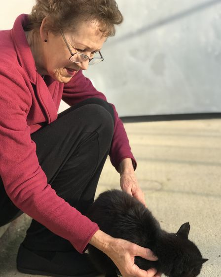 Volunteer Toni Ward, 70 from Hockering releasing one of the cats into their new surroundings at Ven