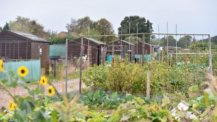 The water rates are rising for users of the Hellesdon allotment on Bush Road, Norwich. Picture: Jami