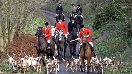 Campaigners have called on the next government to toughen fox hunting laws. Picture: PA