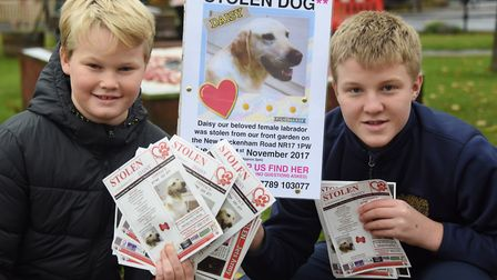 Milo Nicholls, 11, and his brother Max, 14, give out posters at the Stolen Dog meeting in Attleborou