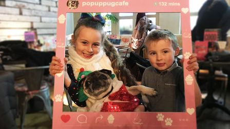Tallula and Hugo with their festive pug at Norwich's Pug Cafe. Picture: Ella Wilkinson