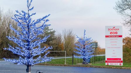 The two 3m illuminated Christmas trees which were stolen from Downham Home and Garden Store. Photo: