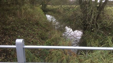 The River Waveney close to where a body was found at Wortham Ling, near Diss. Picture: Simon Parkin