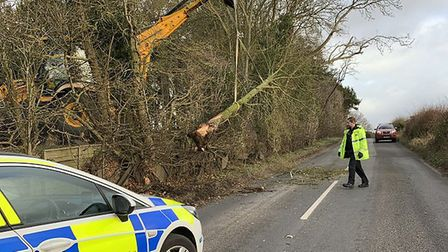 Work to clear trees blown over in high winds blocked the B1527 Bungay Road in South Norfolk. Picture