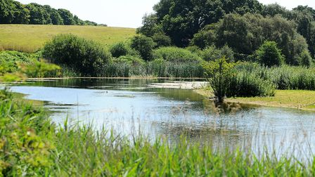 Lound Lakes. Three PSPOs are being proposed to ensure dogs are kept on leads in Herringfleet Hills,