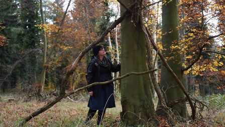 Weird Norfolk's Siofra Connor studies tree branches seemingly placed across a tree which could be a