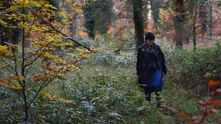 Weird Norfolk's Siofra Connor on the hunt for Bigfoot in Thetford Forest on the A1075, where the bea