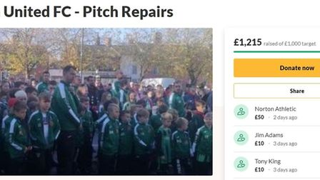 A screenshot of Loddon United FC's GoFundMe page, which has exceeded its £1,000 target. Picture: Arc