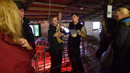 Easton College specialises in farming and land-based courses. Picture: Sonya Duncan