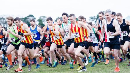 Action from the start of senior race at the Norfolk Cross Country Championships. Picture: Mark Hewle
