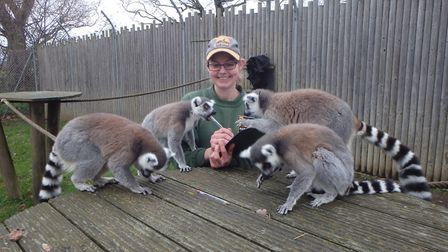 Keepers at Banham Zoo and Africa Alive! are undertaking the annual animal count Picture: ZSEA