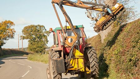 While roadside hedges still need regular maintenance, farmers have been urged to consider cutting ot