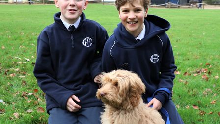 Town Close School's new school dog Bella with pupils Picture: Town Close School