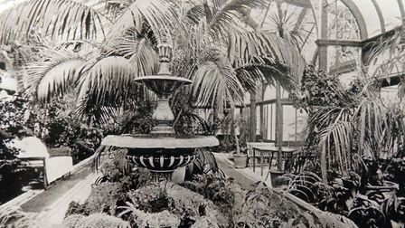 A historic photo of Carrow Hall's conservatory. Photo: Sonya Duncan