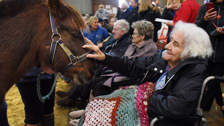 Jean Spalding, from St Leonards Court at Mundford Residential Dementia Care Home, met pony Roger at