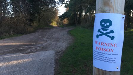 A poster warning dog owners about a possible poisonous substance on Mousehold Heath in Norwich.