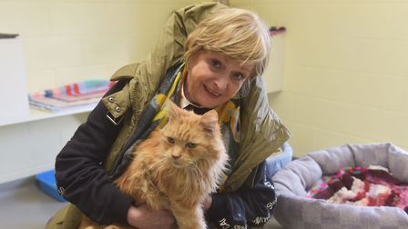 Helen McDermott at the Venture Farm Cat Rescue in Mattishall. Pictures: BRITTANY WOODMAN