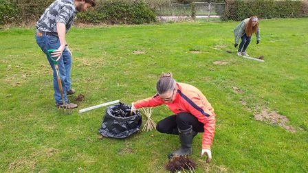 Dereham Sixth Form staff and students have planted a variety of trees including plum, silver birch a