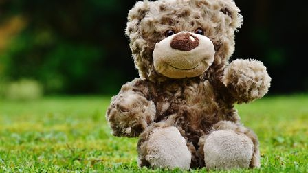 Teddy bears have been spotted in families' windows as an activity for children during the pandemic.