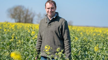 Diss Monitor Farm manager Richard Ling in a field of oilseed rape at Rookery Farm in Wortham, near D