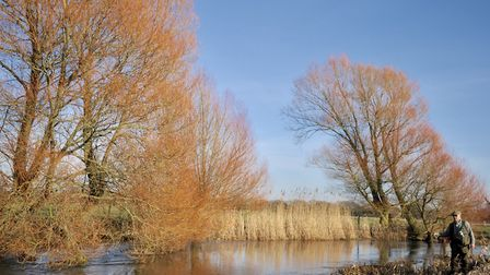 Angling looks set for a return Picture: John Bailey
